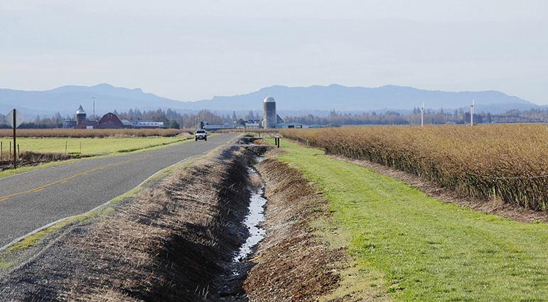 Avoiding Ditches