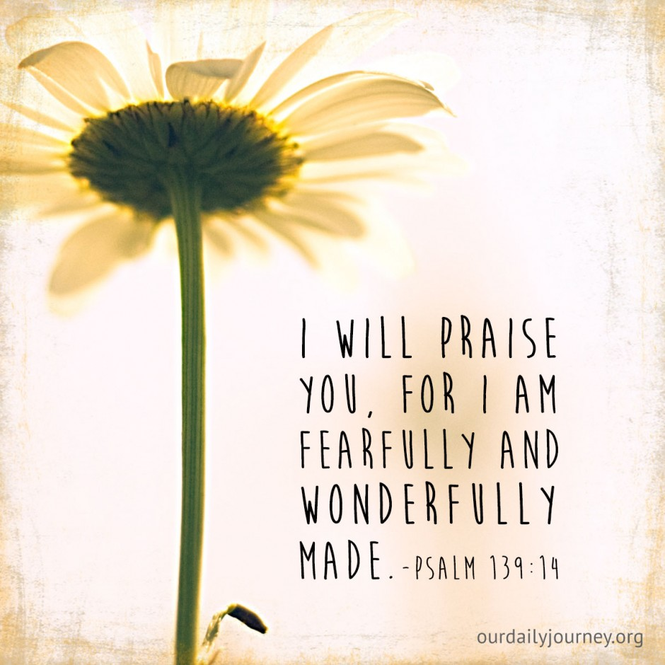fearfully and wonderfully made  our daily journey